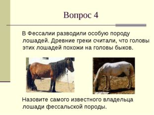 Вопрос 4 В Фессалии разводили особую породу лошадей. Древние греки считали, ч