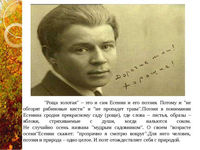 """""""Роща золотая"""" – это и сам Есенин и его поэзия. Потому и """"не обгорят рябинов..."""