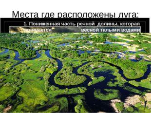 Места где расположены луга: 1. Пониженная часть речной долины, которая залива