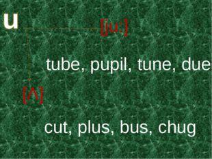[јu:] [Λ] tube, pupil, tune, due cut, plus, bus, chug