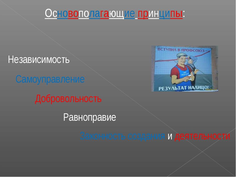 Основополагающие принципы: Независимость Самоуправление Добровольность Равноп...