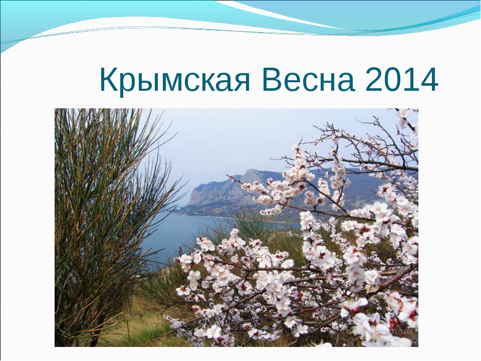 Крымская Весна 2014