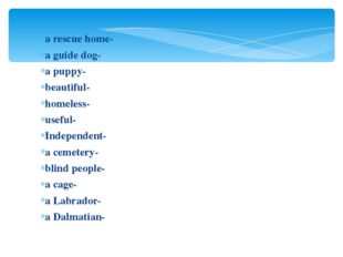 a rescue home- a guide dog- a puppy- beautiful- homeless- useful- Independen