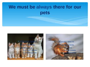We must be always there for our pets