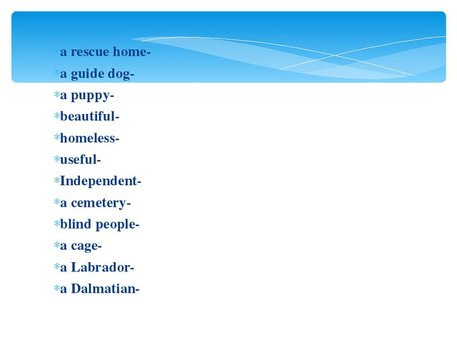 a rescue home- a guide dog- a puppy- beautiful- homeless- useful- Independen...
