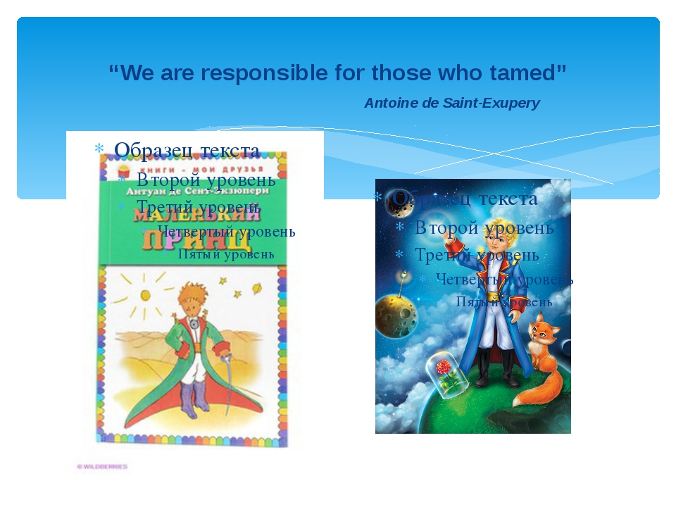 """""""We are responsible for those who tamed"""" Antoine de Saint-Exupery"""