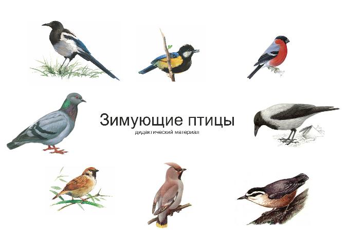 http://122012.imgbb.ru/user/3_new/35362/1/17ccd583e26ede50f73b0cbe1dff5660.jpg