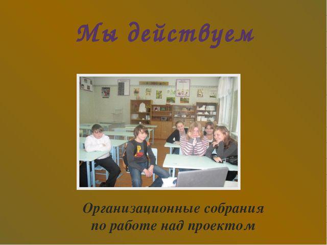 Мы действуем Организационные собрания по работе над проектом