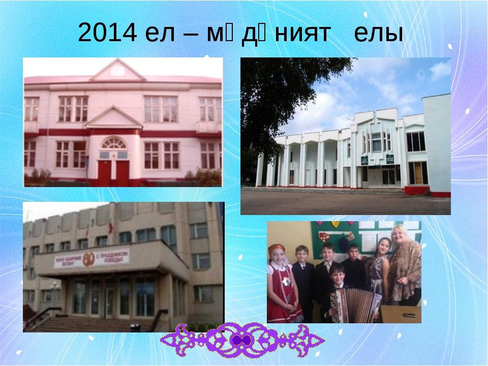 2014 ел – мәдәният елы