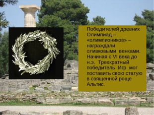 Победителей древних Олимпиад – «олимпиоников» – награждали оливковыми венками