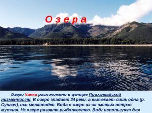 Озеро Ханка расположено в центре Приханкайской низменности. В озеро впадает