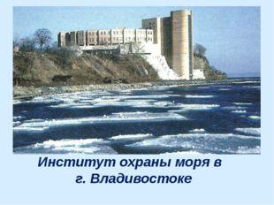 Институт охраны моря в г. Владивостоке