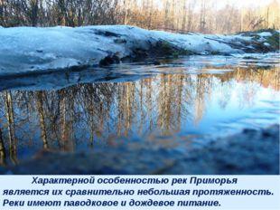 Характерной особенностью рек Приморья является их сравнительно небольшая про