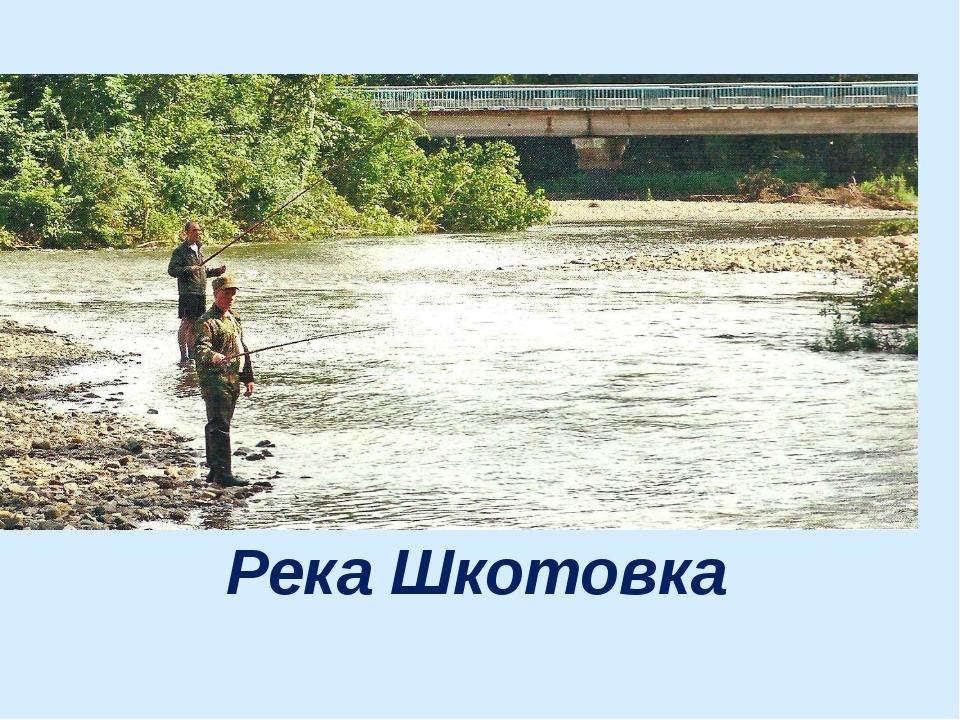 Река Шкотовка