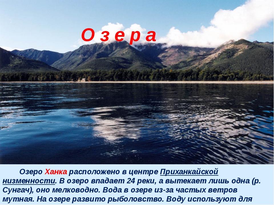 Озеро Ханка расположено в центре Приханкайской низменности. В озеро впадает...