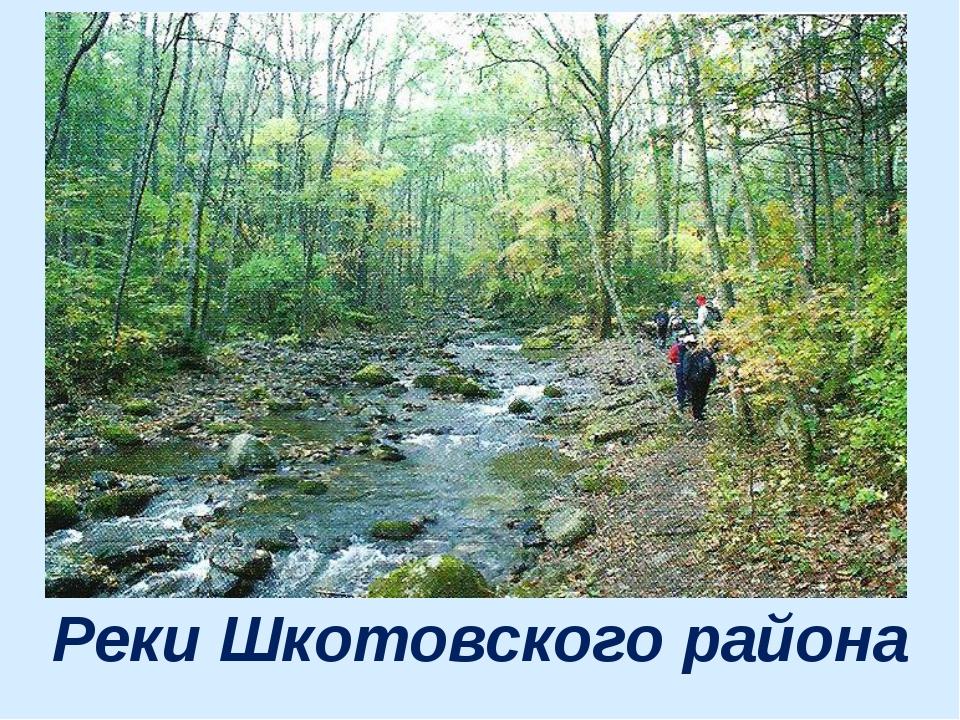 Реки Шкотовского района