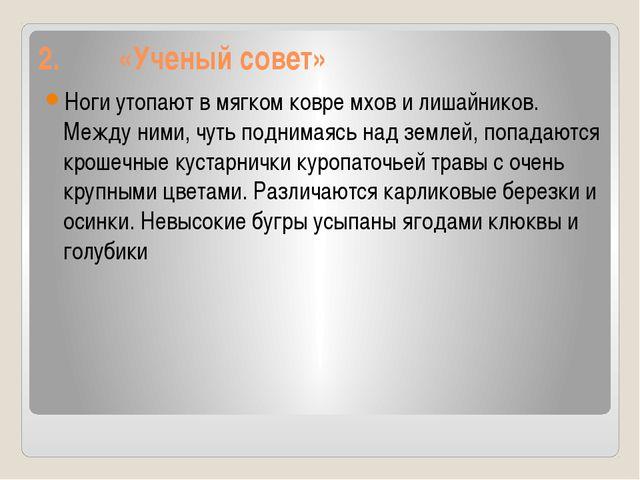 2. «Ученый совет» Ноги утопают в мягком ковре мхов и лишайников. Между ними,...