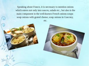 Speaking about France, it is necessary to mention onions which enters not onl