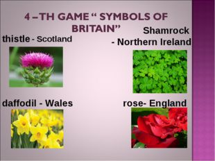 thistle Shamrock - NorthernIreland rose- England daffodil - Wales - Scot