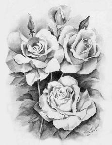 рисунки роз - Вампирский сайт