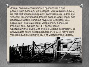 Лагерь был обнесён колючей проволокой в два ряда и имел площадь 40 гектаров.