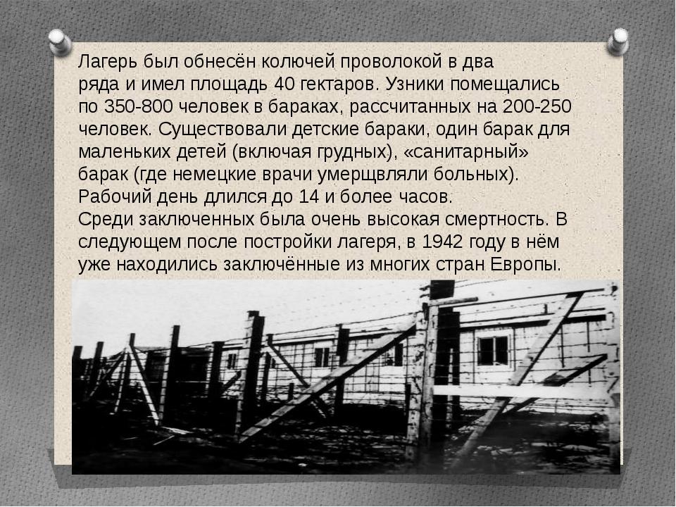 Лагерь был обнесён колючей проволокой в два ряда и имел площадь 40 гектаров....