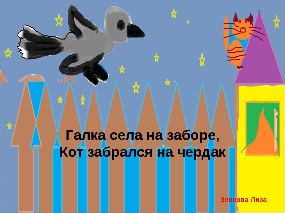 Галка села на заборе, Кот забрался на чердак Зенкова Лиза