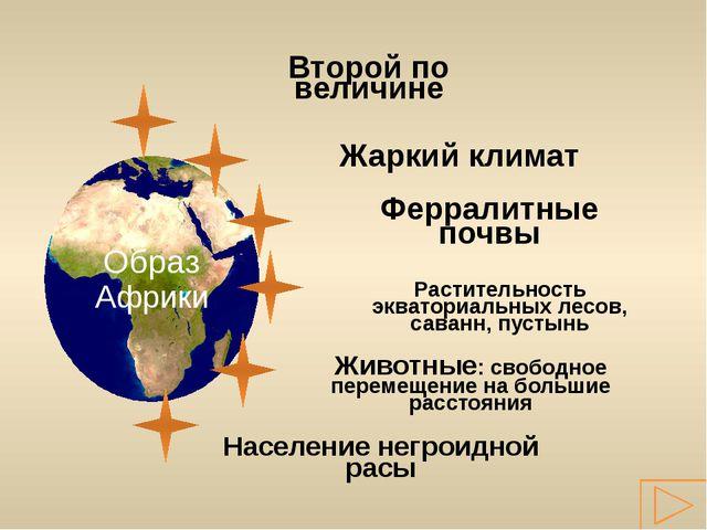 Второй по величине 29,2 млн км² 54,9 млн км² 7,6 млн км² 13,9 млн км² 17, 8 м...