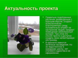 Актуальность проекта Правильно подобранные растения, размещенные с хорошим вк