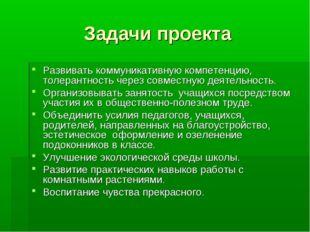 Задачи проекта Развивать коммуникативную компетенцию, толерантность через сов