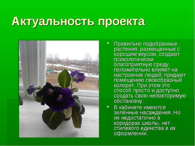 Актуальность проекта Правильно подобранные растения, размещенные с хорошим вк...