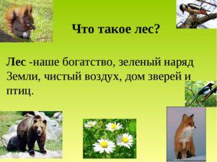 Что такое лес? Лес -наше богатство, зеленый наряд Земли, чистый воздух, дом з