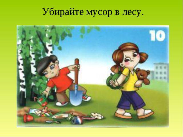 Убирайте мусор в лесу.