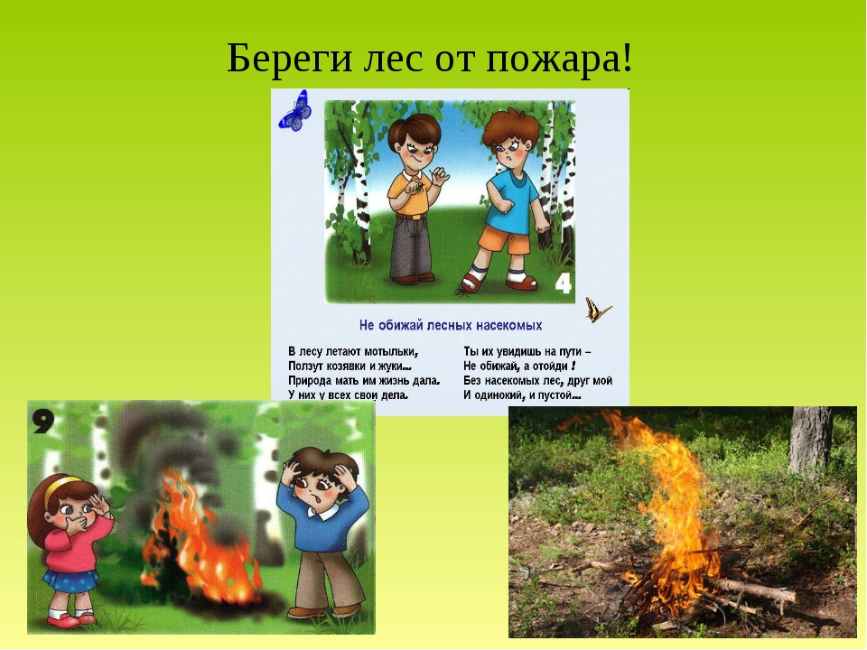 Береги лес от пожара!