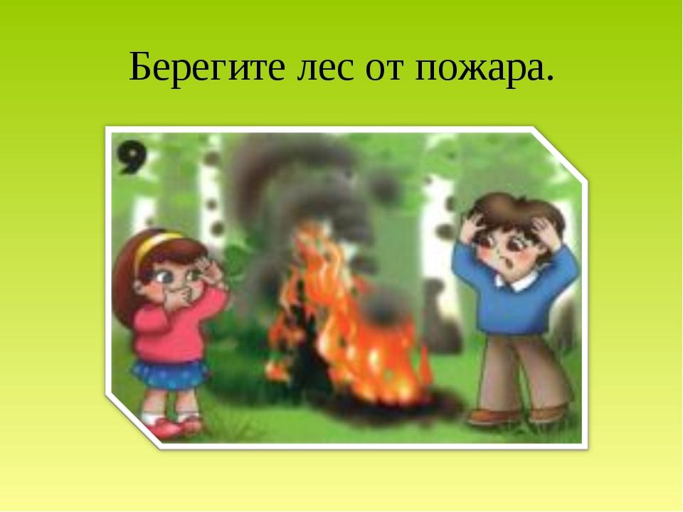 Берегите лес от пожара.