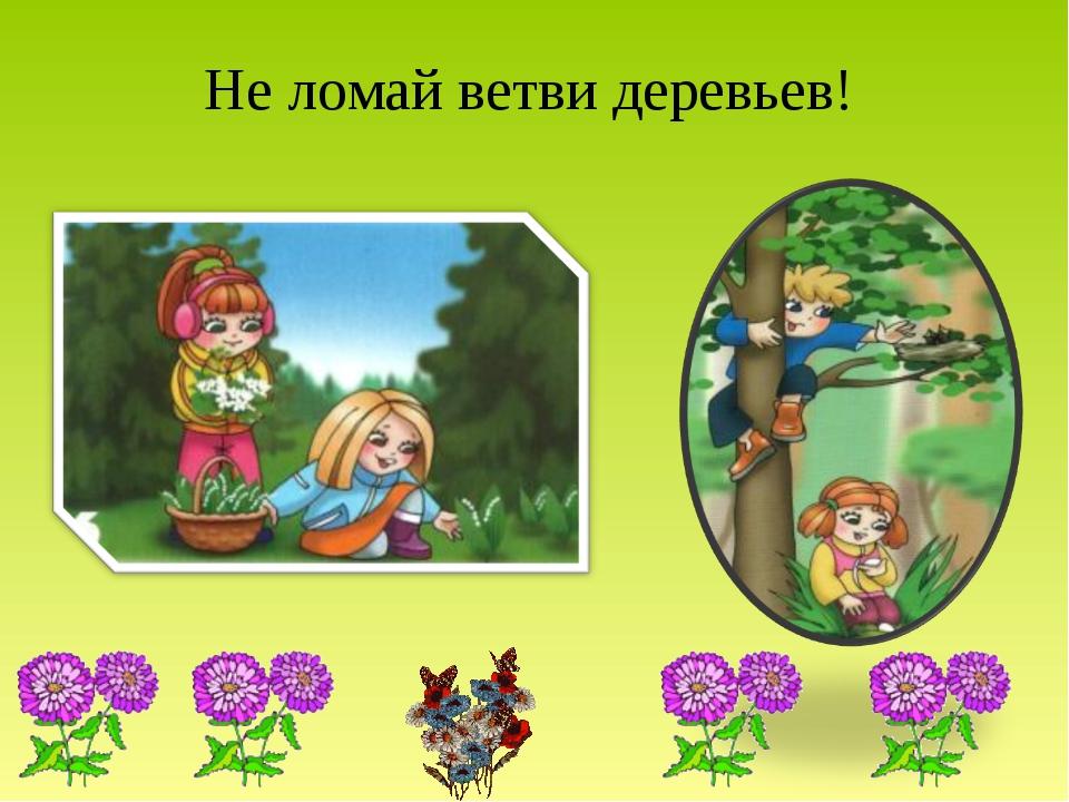 Не ломай ветви деревьев!
