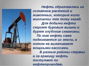 Нефть образовалась из остатков растений и животных, которые жили миллионы ле