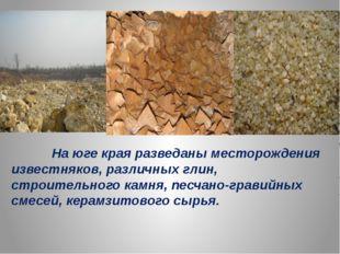 На юге края разведаны месторождения известняков, различных глин, строительно