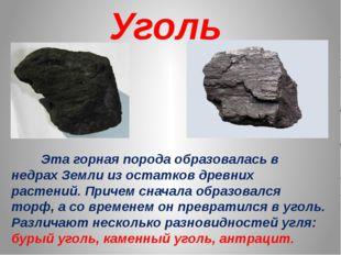 Уголь Эта горная порода образовалась в недрах Земли из остатков древних расте