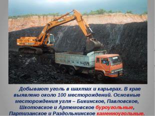 Добывают уголь в шахтах и карьерах. В крае выявлено около 100 месторождений.