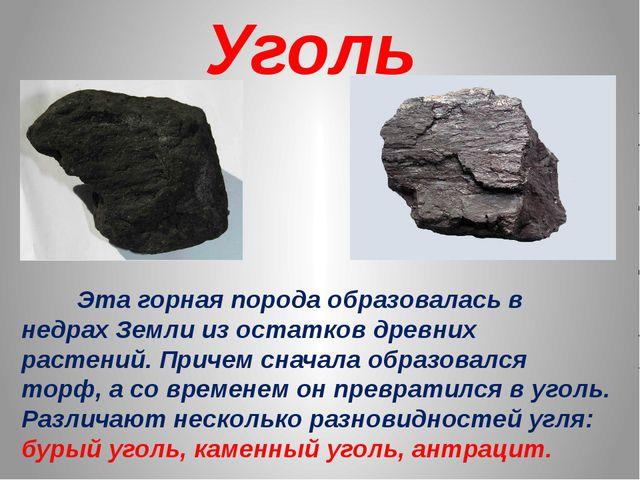 Уголь Эта горная порода образовалась в недрах Земли из остатков древних расте...