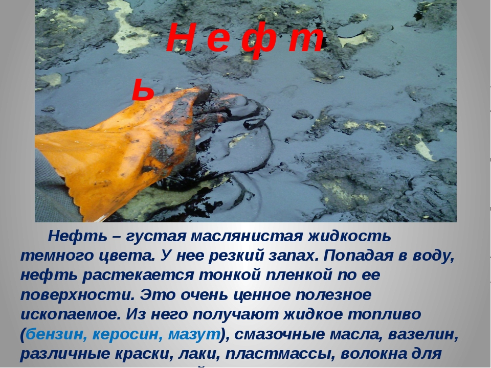 Нефть – густая маслянистая жидкость темного цвета. У нее резкий запах. Попад...