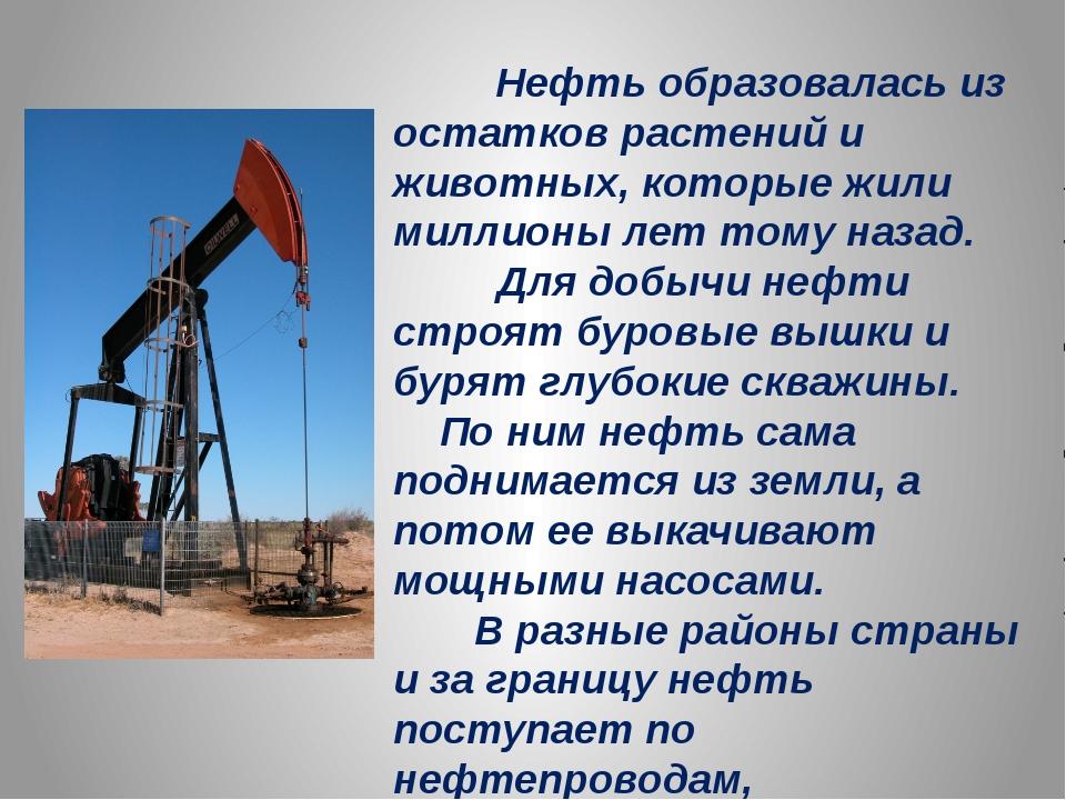 Нефть образовалась из остатков растений и животных, которые жили миллионы ле...
