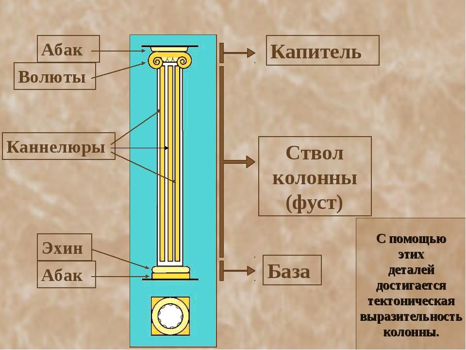 С помощью этих деталей достигается тектоническая выразительность колонны.