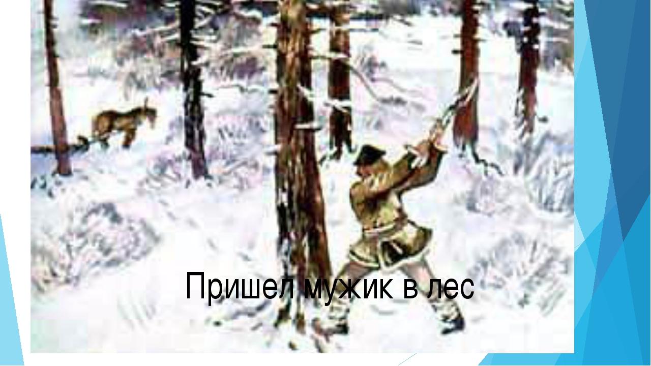 Пришел мужик в лес