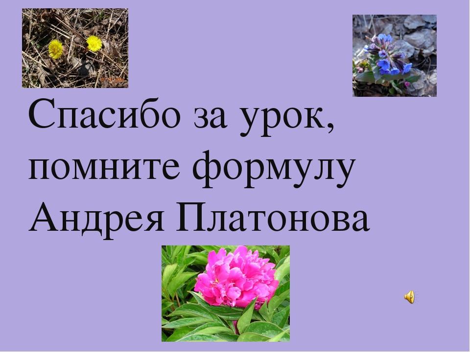 Спасибо за урок, помните формулу Андрея Платонова