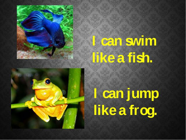 I can swim like a fish. I can jump like a frog.