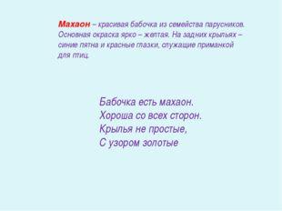 Махаон – красивая бабочка из семейства парусников. Основная окраска ярко – же