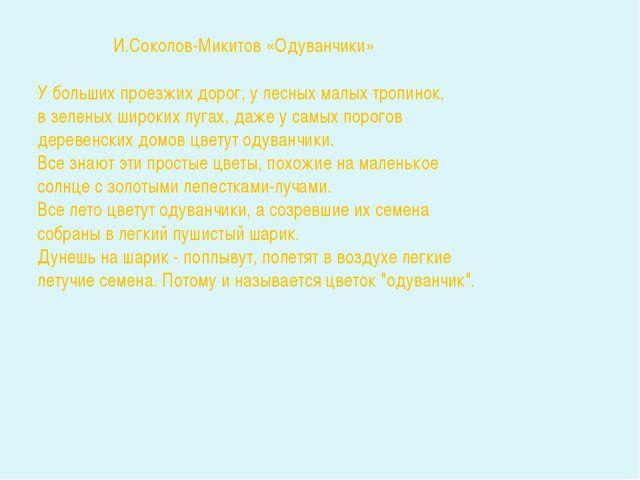 И.Соколов-Микитов «Одуванчики» У больших проезжих дорог, у лесных малых троп...