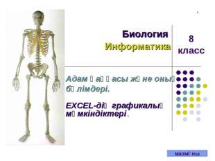 . Биология Информатика Адам қаңқасы және оның бөлімдері. EXCEL-дің графикалық